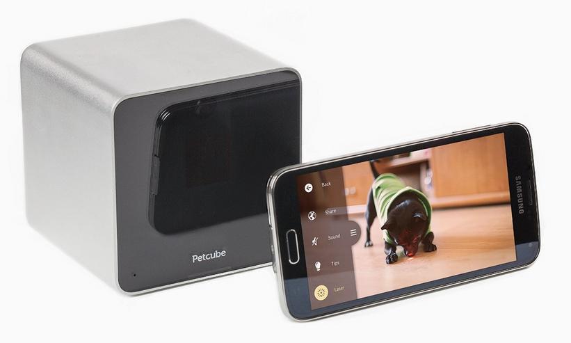Petcube – Interaktive Wi-Fi Tierkamera